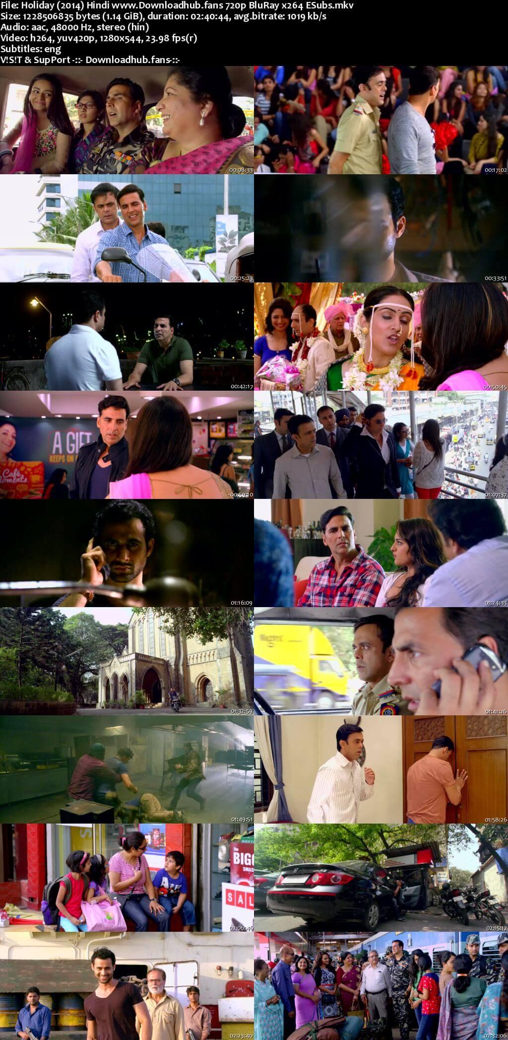 Holiday 2014 Hindi 720p BluRay ESubs