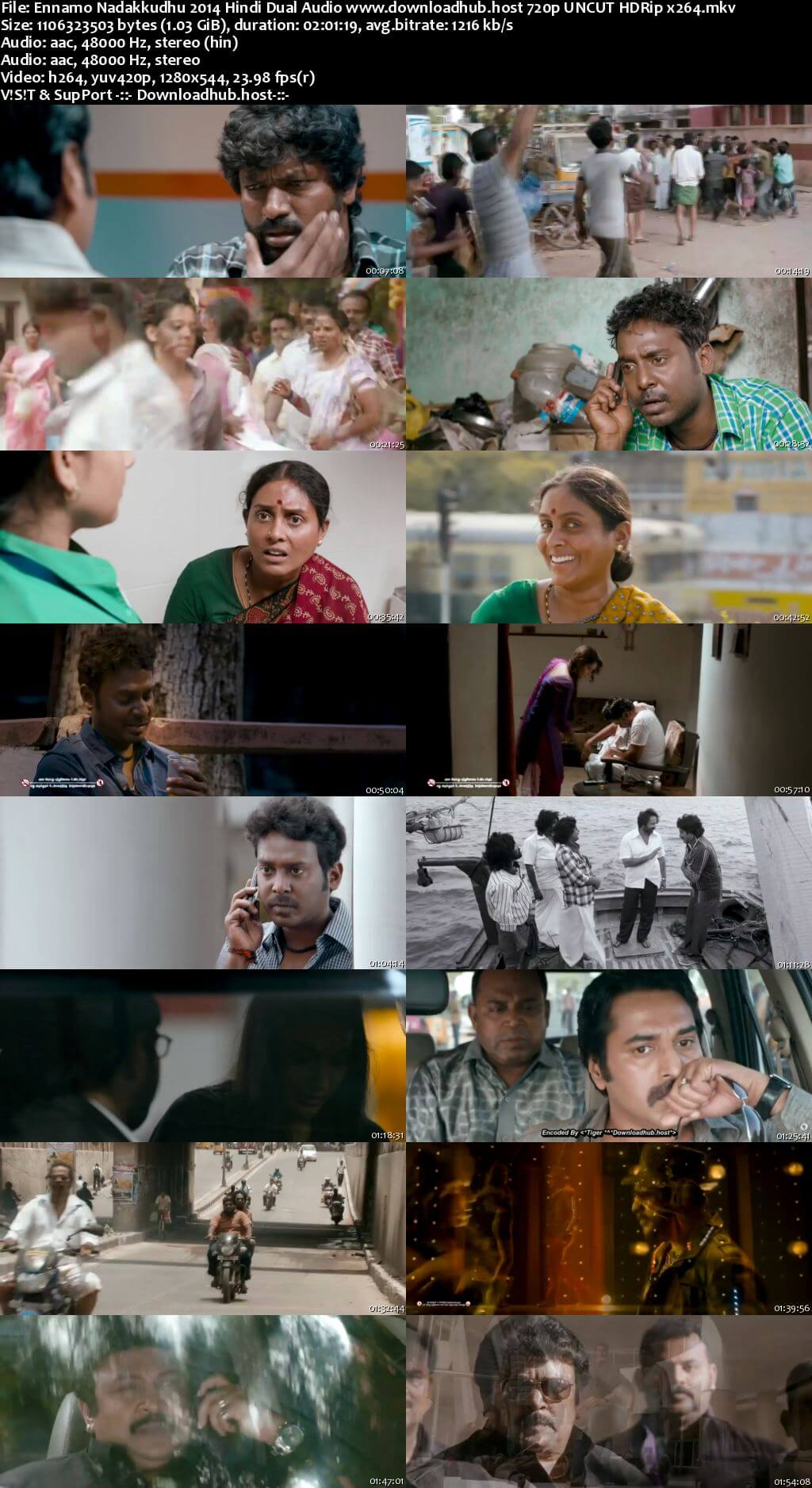 Ennamo Nadakkudhu 2014 Hindi Dual Audio 720p UNCUT HDRip x264
