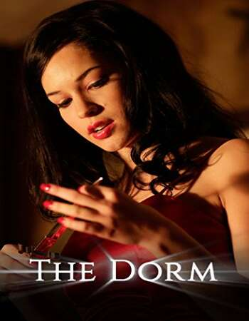 The Dorm 2014 Hindi Dual Audio 250MB WEBRip 480p