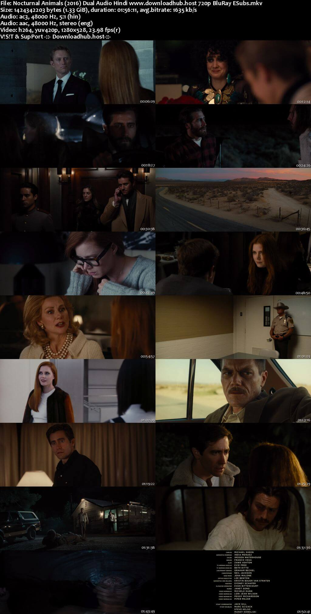 Nocturnal Animals 2016 Hindi Dual Audio 720p BluRay ESubs