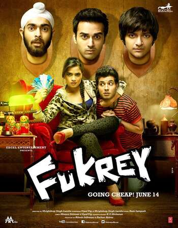 Fukrey 2013 Hindi 700MB BluRay 720p ESubs HEVC