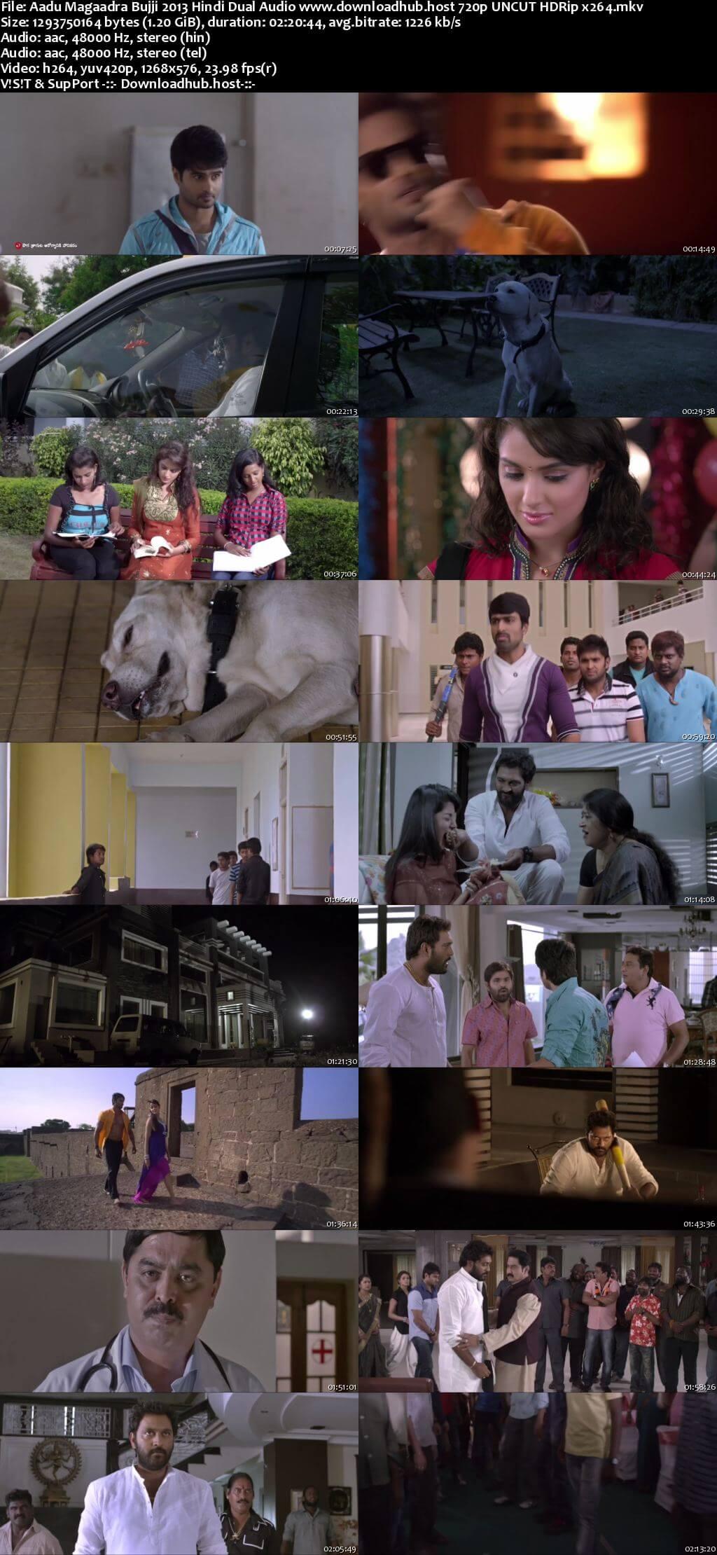 Aadu Magaadra Bujji 2013 Hindi Dual Audio 720p UNCUT HDRip x264