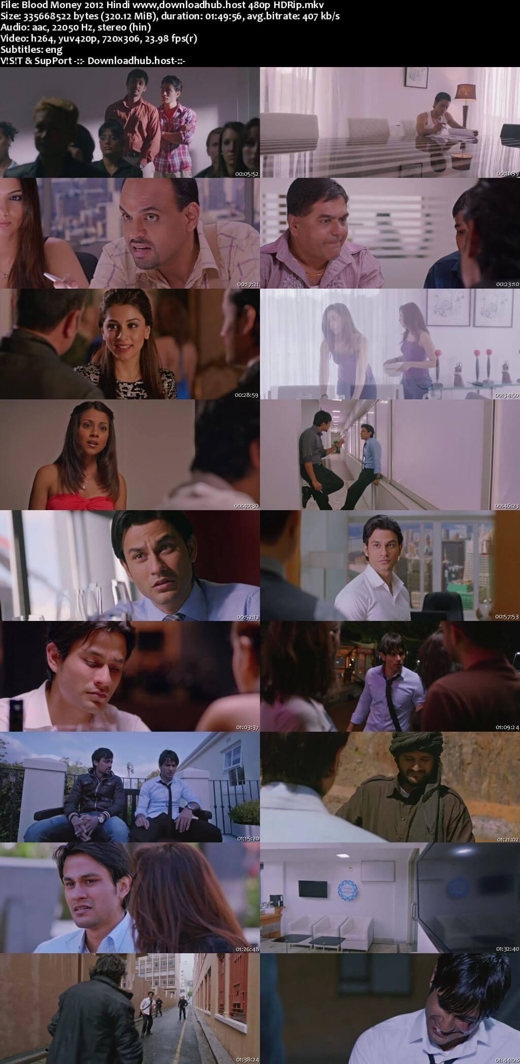Blood Money 2012 Hindi 300MB HDRip 480p ESubs