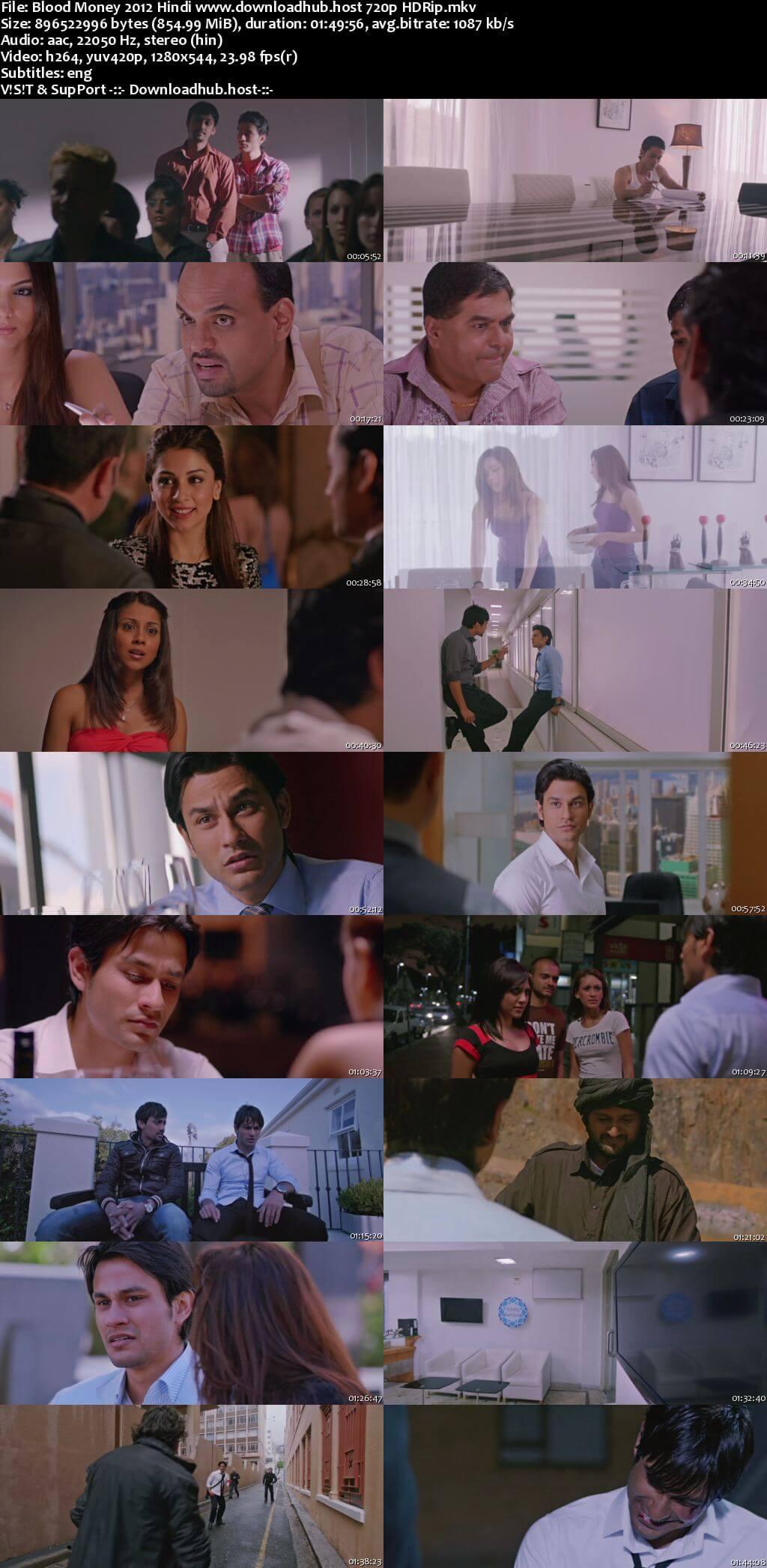 Blood Money 2012 Hindi 720p HDRip ESubs