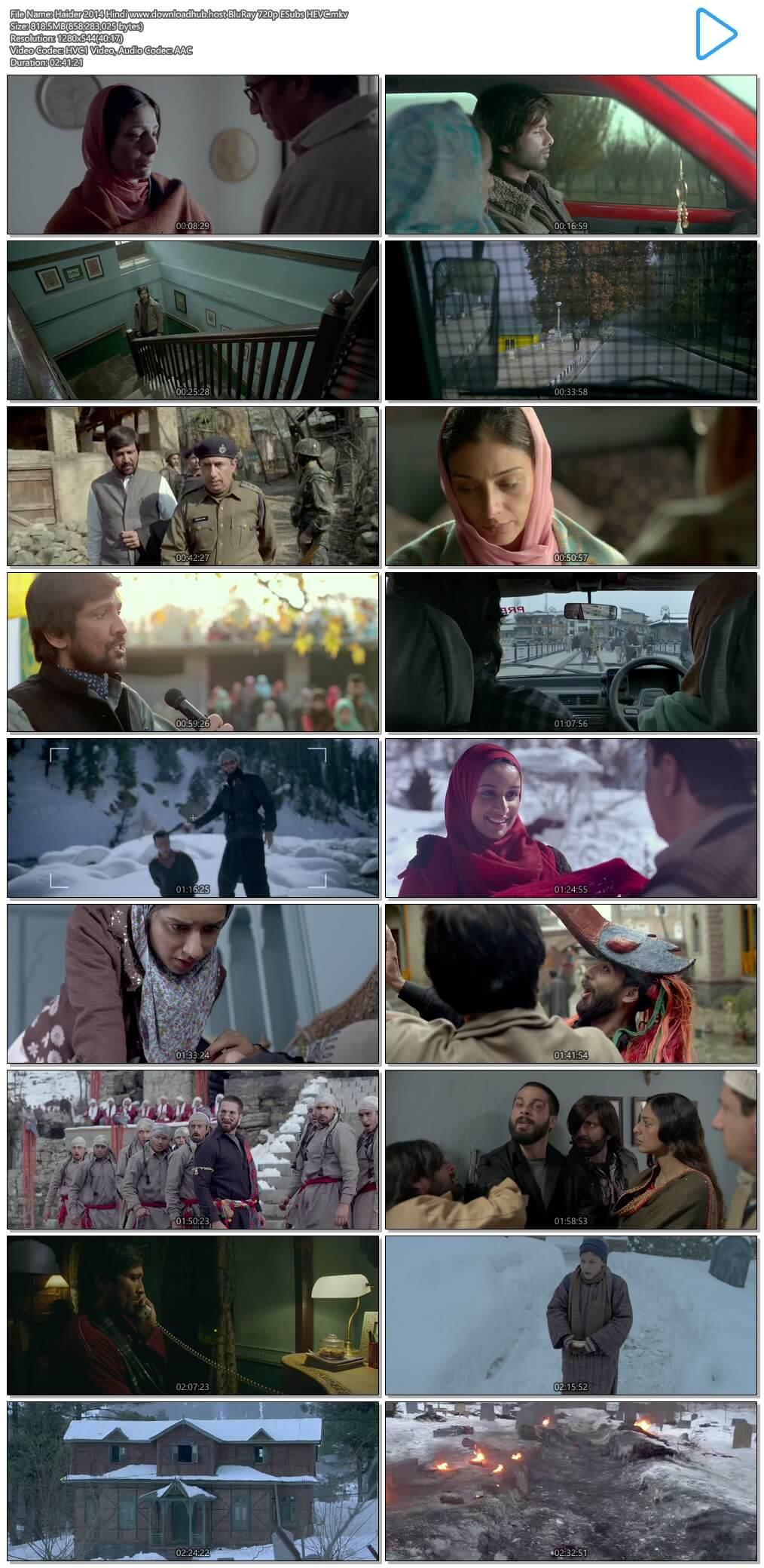Haider 2014 Hindi 800MB BluRay 720p ESubs HEVC