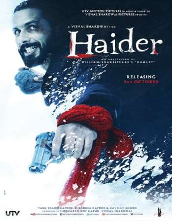 Haider 2014 Hindi 800MB BluRay 720p ESubs HEVC