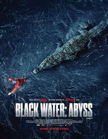 Black Water Abyss 2020 English 300MB Web-DL 480p ESubs
