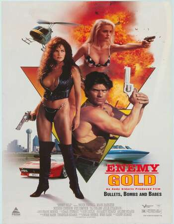Enemy Gold 1993 Hindi Dual Audio BRRip Full Movie 480p Download