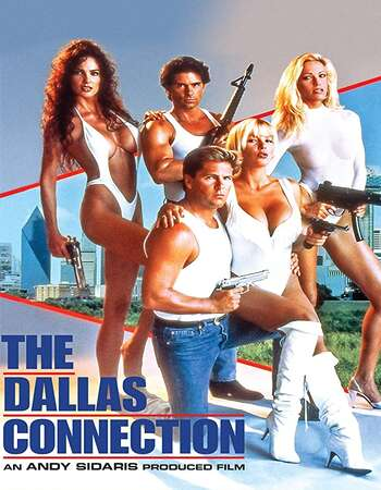 The Dallas Connection 1994 Hindi Dual Audio 720p UNRATED BluRay ESubs