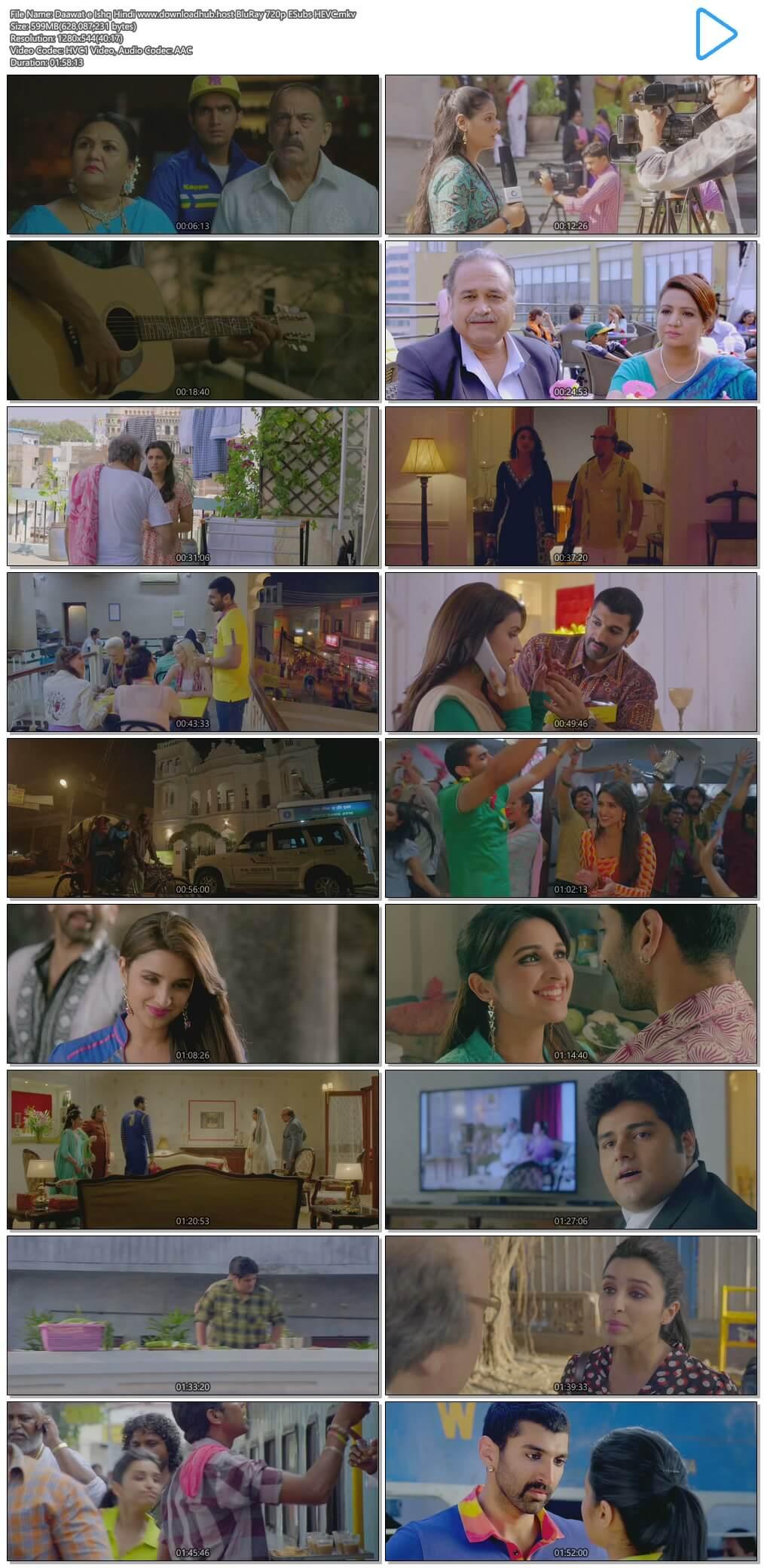 Daawat e Ishq 2014 Hindi 600MB BluRay 720p ESubs HEVC