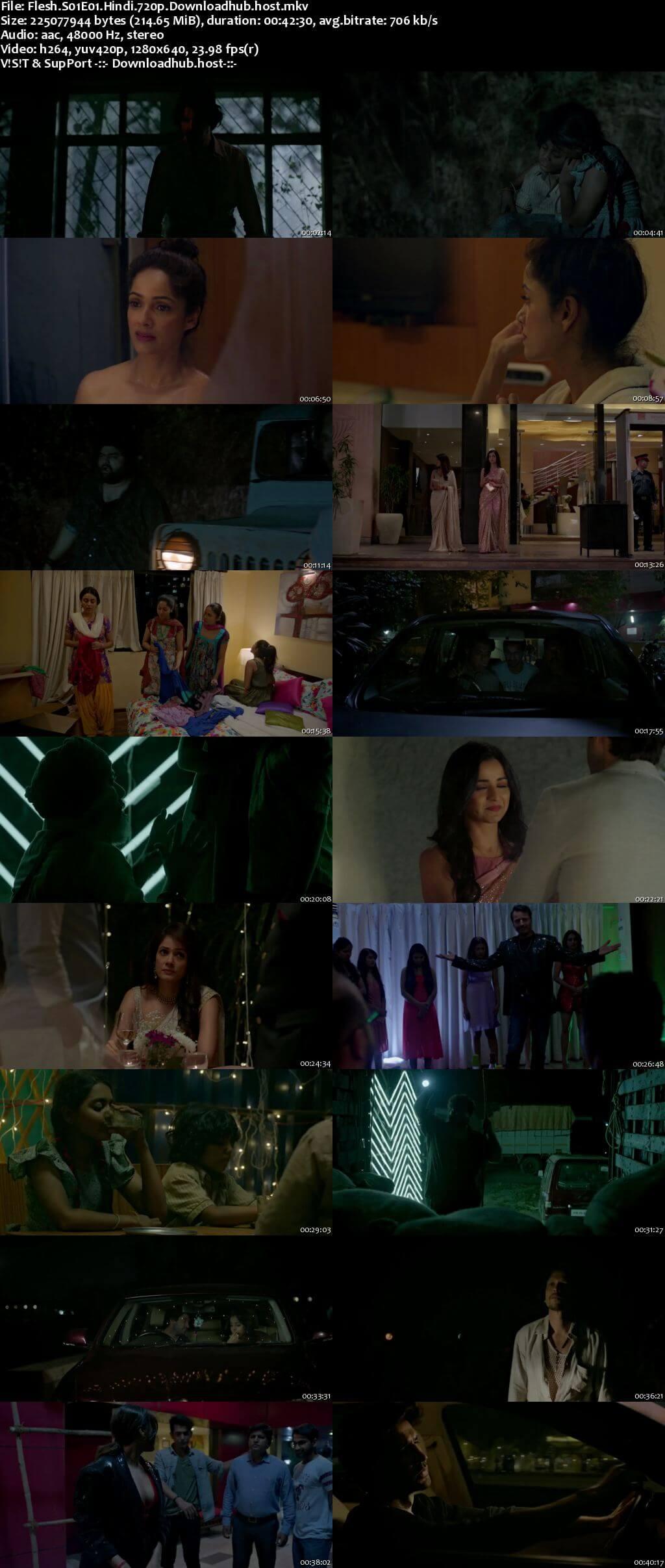 Flesh 2020 Hindi Season 01 Complete 720p HDRip x264