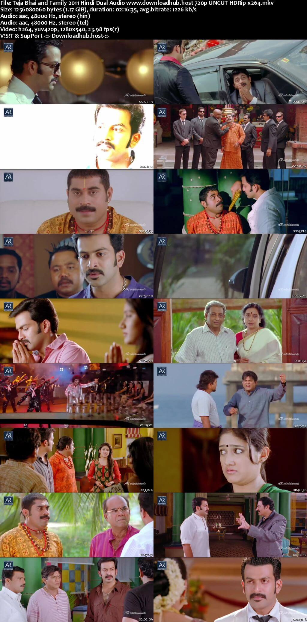Teja Bhai and Family 2011 Hindi Dual Audio 720p UNCUT HDRip x264