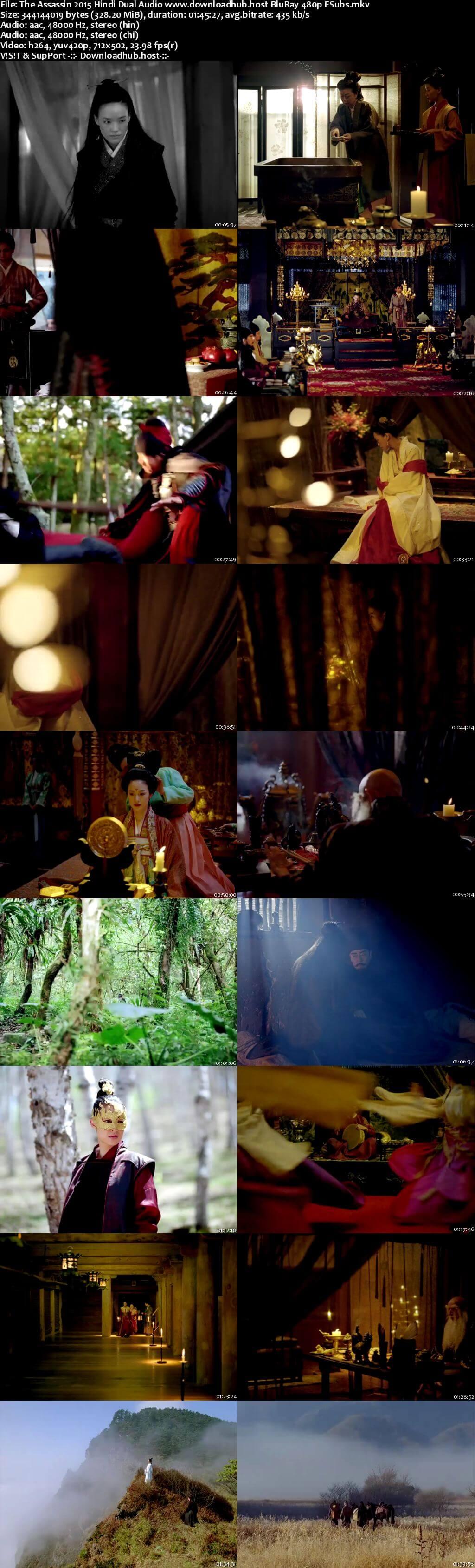 The Assassin 2015 Hindi Dual Audio 300MB BluRay 480p ESubs