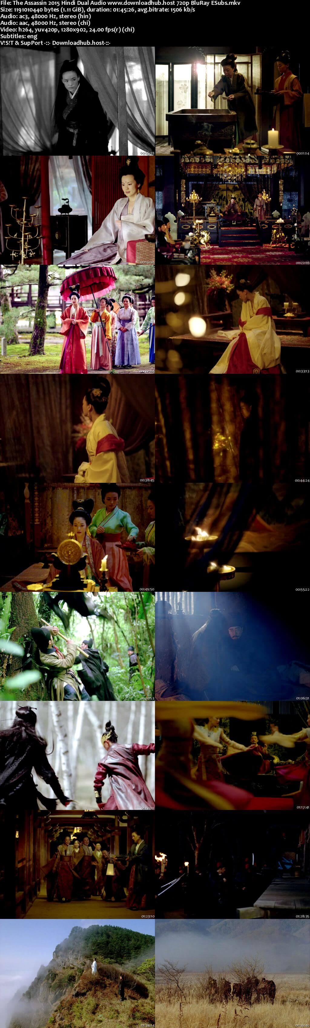 The Assassin 2015 Hindi Dual Audio 720p BluRay ESubs