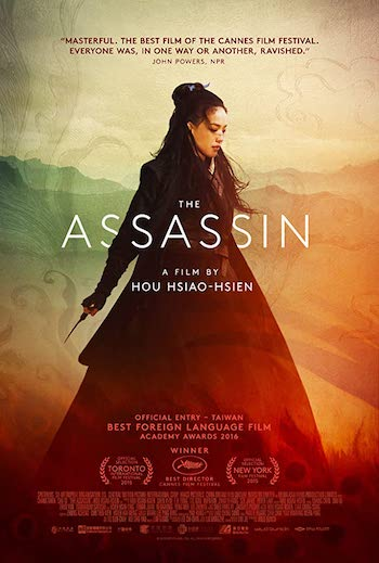 The Assassin 2015 Dual Audio Hindi Chinese 480p BluRay 300MB