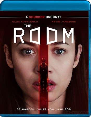 The Room 2019 Dual Audio Hindi 480p BluRay 300MB