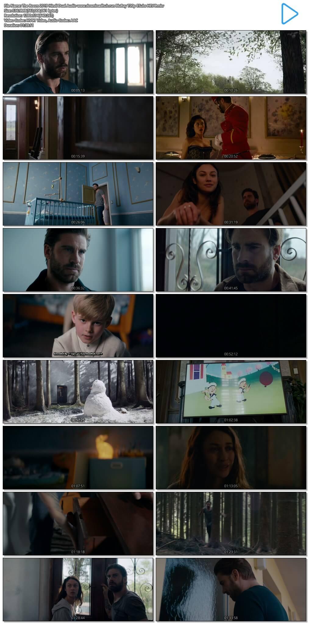 The Room 2019 Hindi Dual Audio 500MB BluRay 720p ESubs HEVC