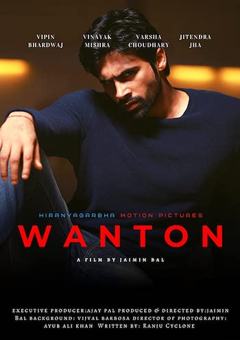 Wanton 2020 Hindi 480p HDRip 280mb