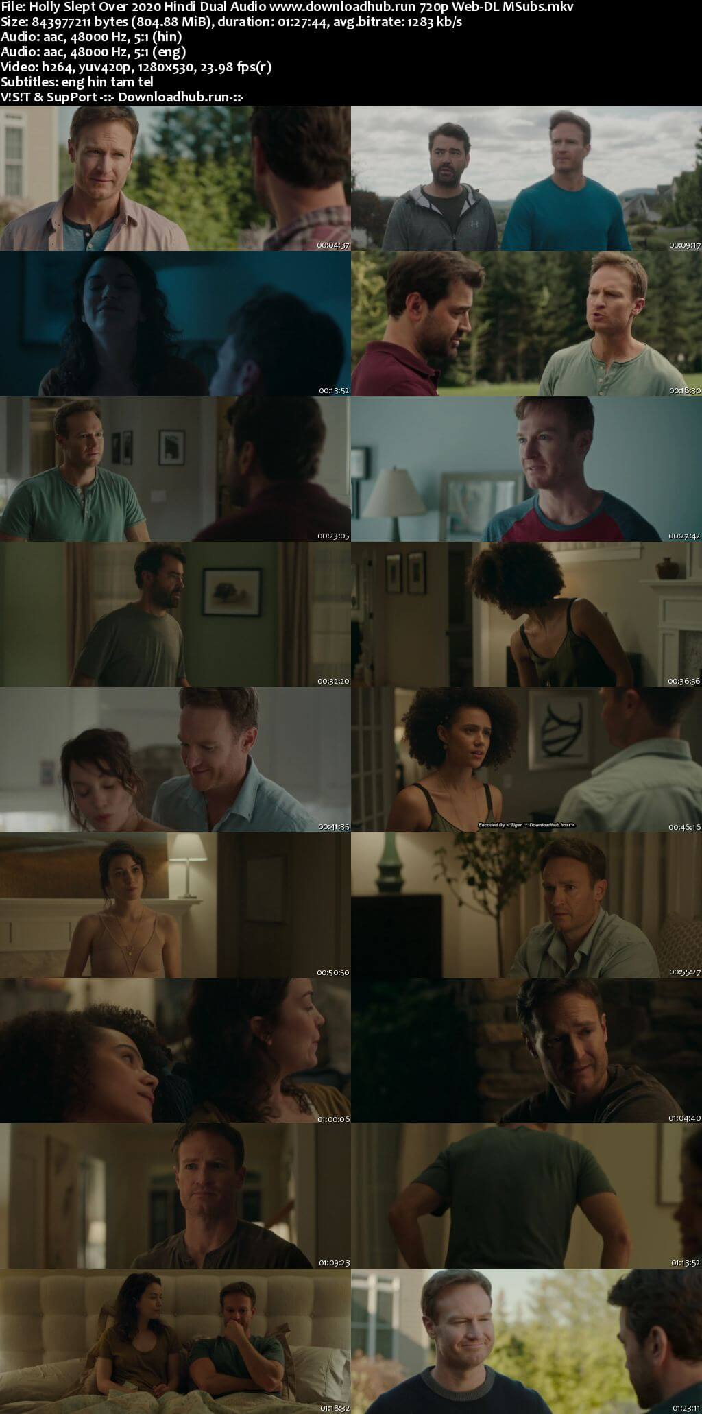 Holly Slept Over 2020 Hindi Dual Audio 720p Web-DL MSubs