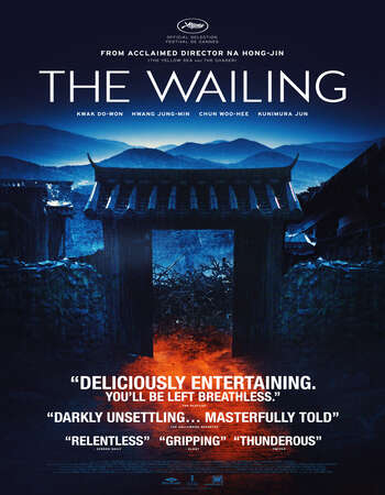 The Wailing 2016 Hindi Dual Audio 500MB Web-DL 480p ESubs