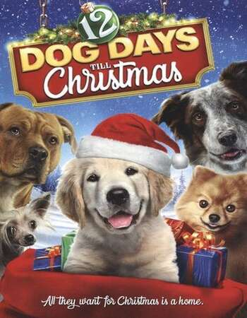 12 Dog Days of Christmas 2014 Hindi Dual Audio 300MB HDTVRip 480p ESubs