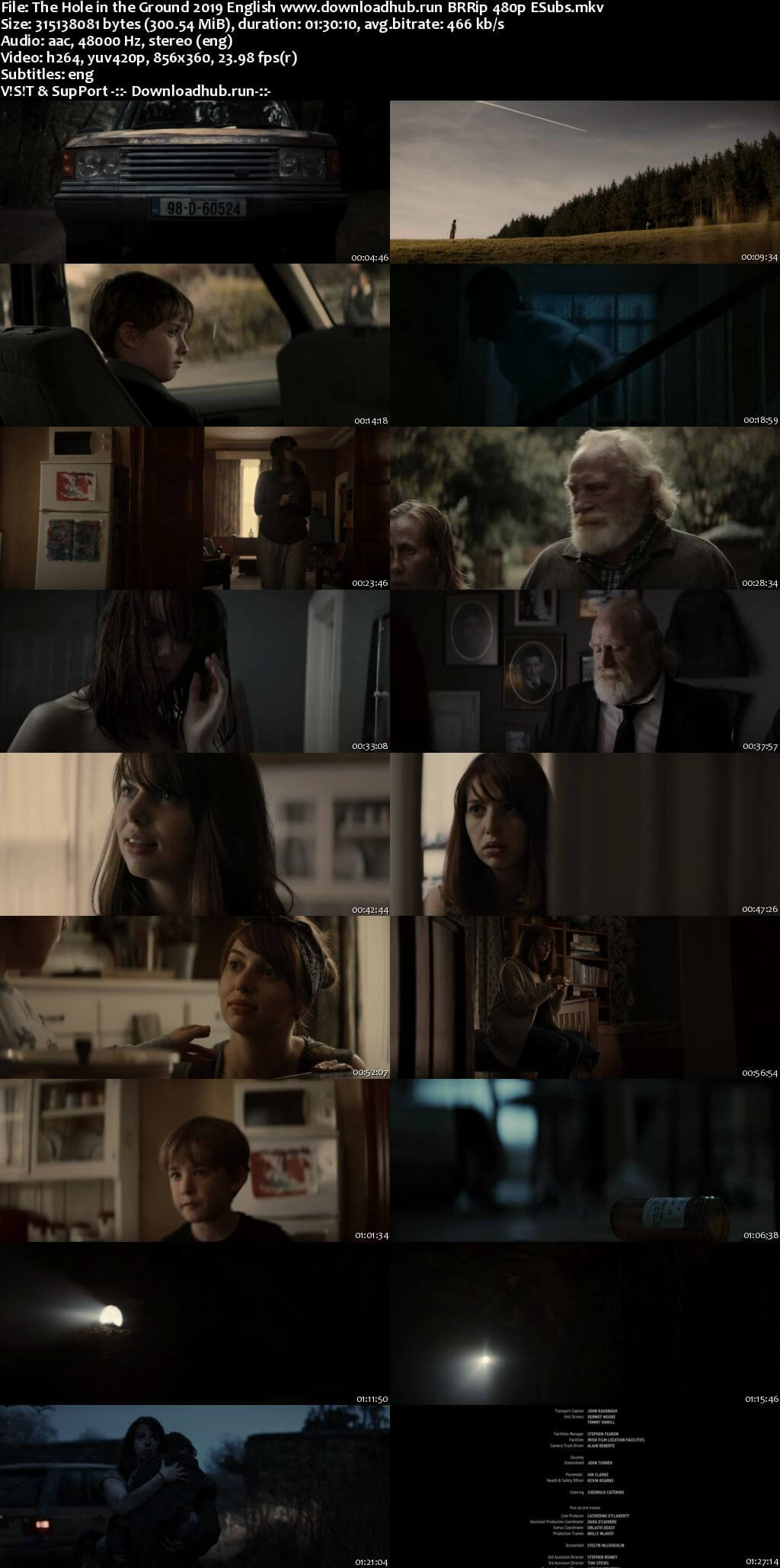 The Hole in the Ground 2019 English 300MB BRRip 480p ESubs