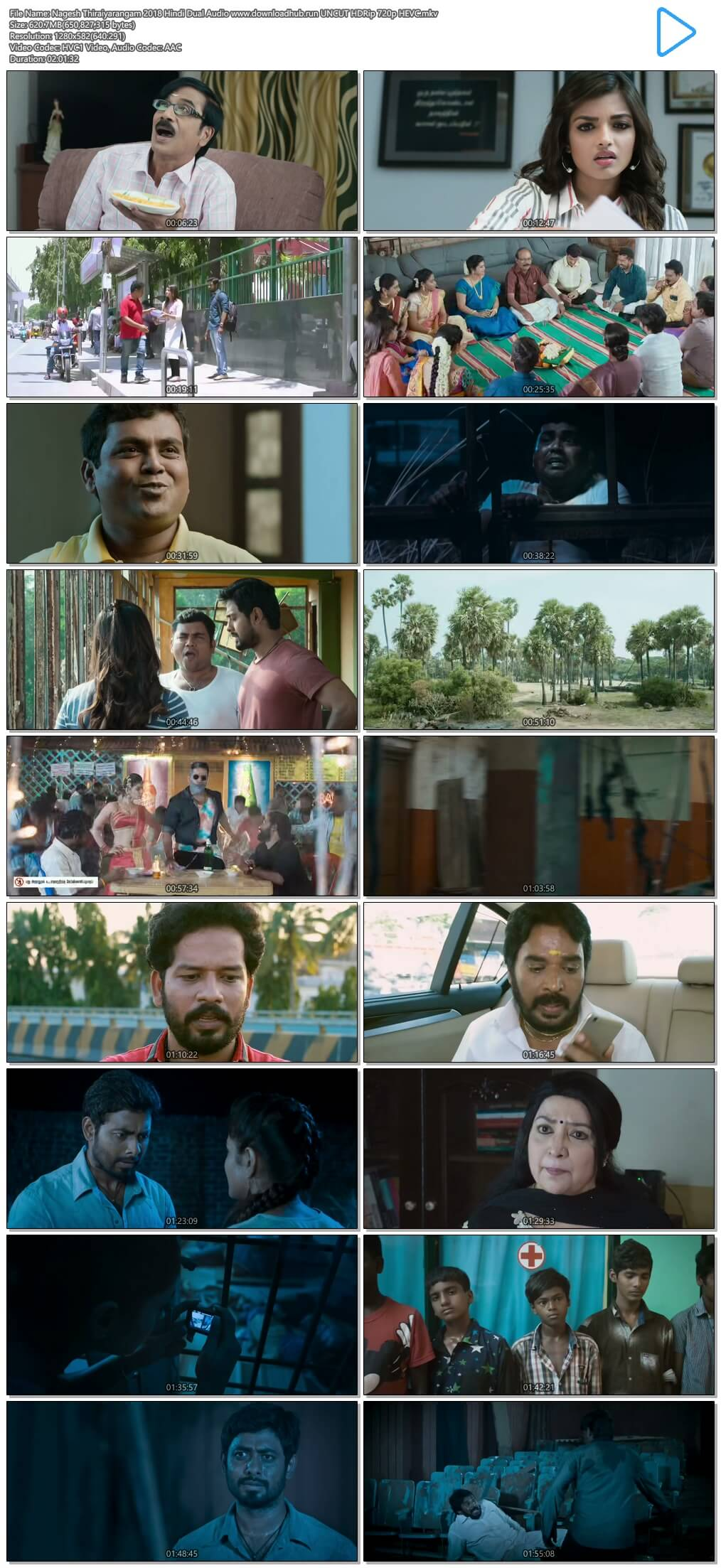 Nagesh Thiraiyarangam 2018 Hindi Dual Audio 600MB UNCUT HDRip 720p HEVC