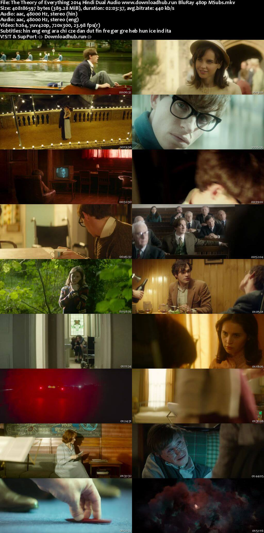The Theory of Everything 2014 Hindi Dual Audio 350MB BluRay 480p MSubs