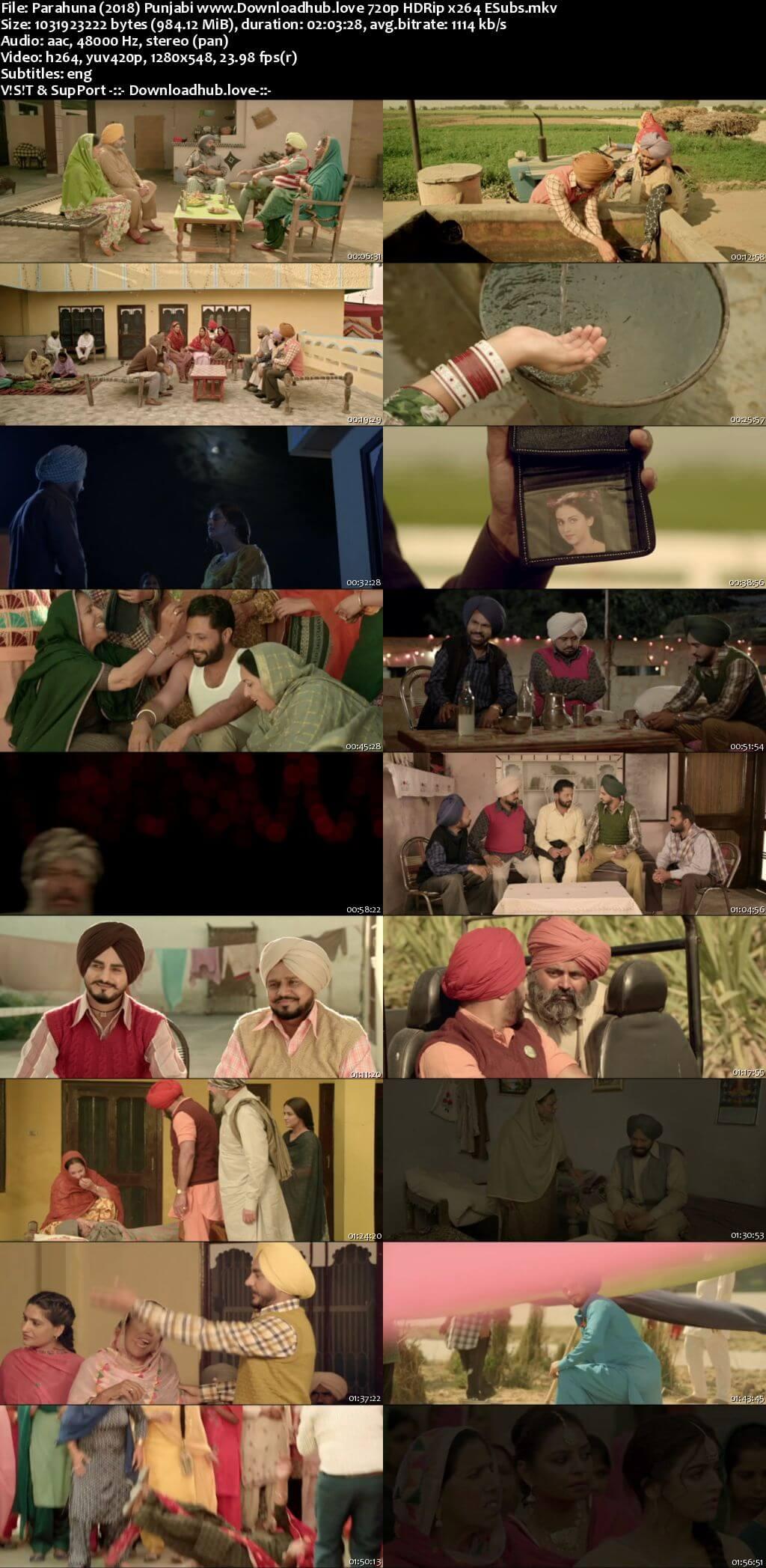 Parahuna 2018 Punjabi 720p HDRip ESubs