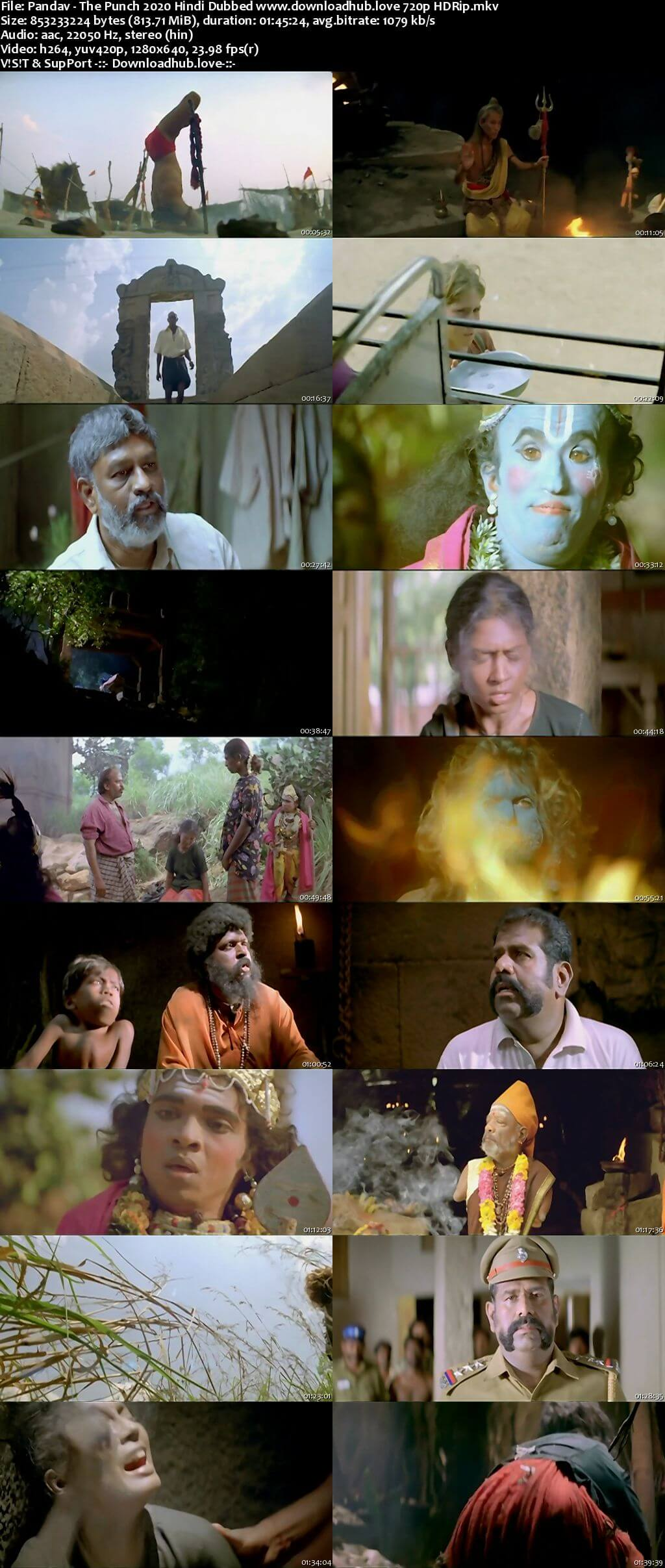 Pandav The Punch 2020 Hindi Dubbed 720p HDRip x264