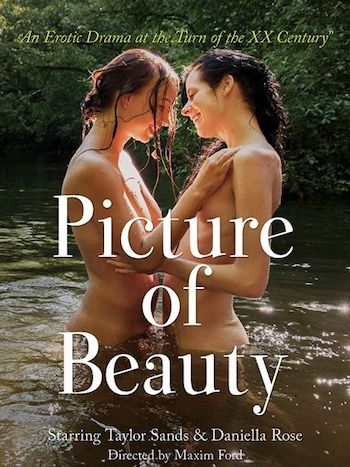 Picture of Beauty 2017 Dual Audio Hindi English WEBRip 720p 480p Movie Download