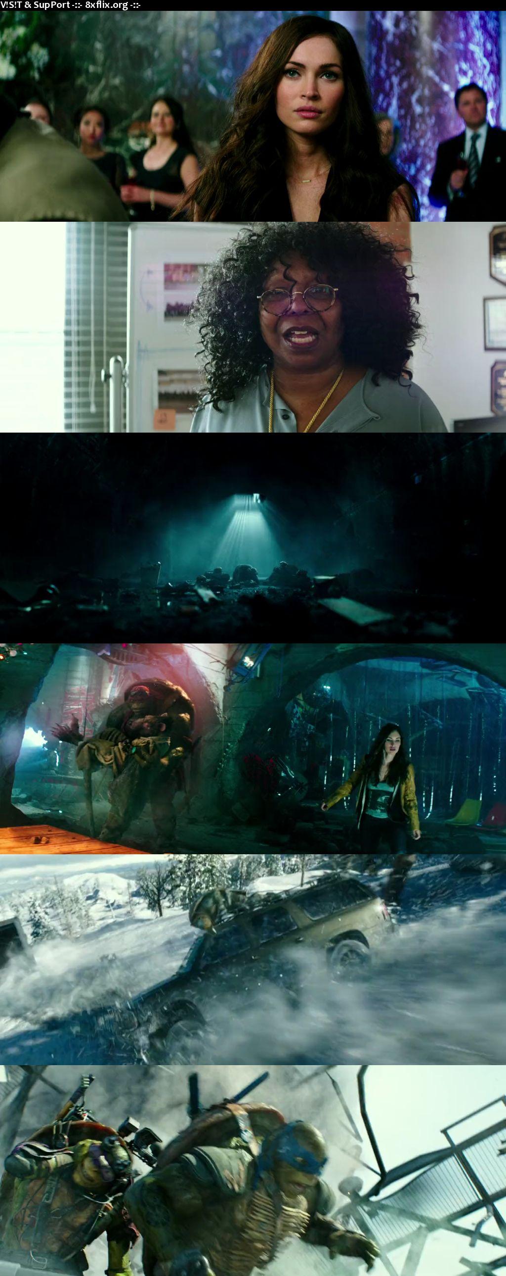 Teenage Mutant Ninja Turtles 2014 Hindi English Dual Audio 720p 480p BluRay