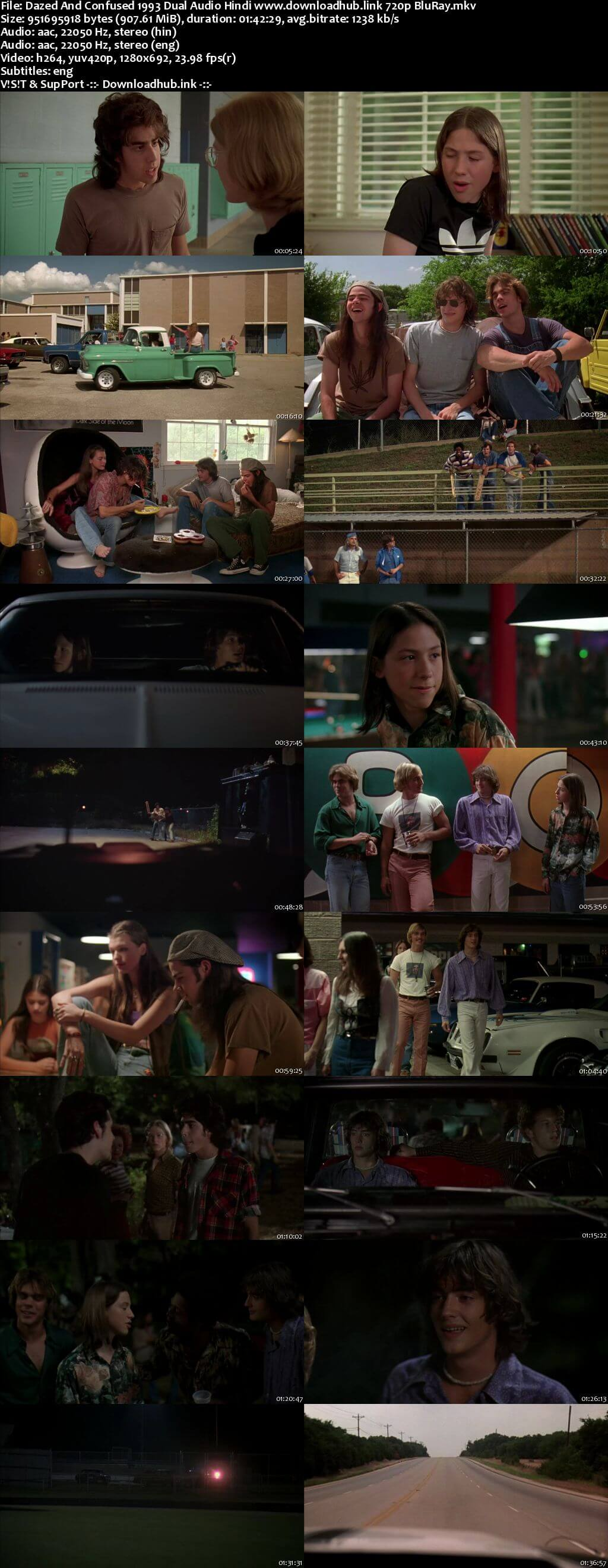 Dazed and Confused 1993 Hindi Dual Audio 720p BluRay ESubs