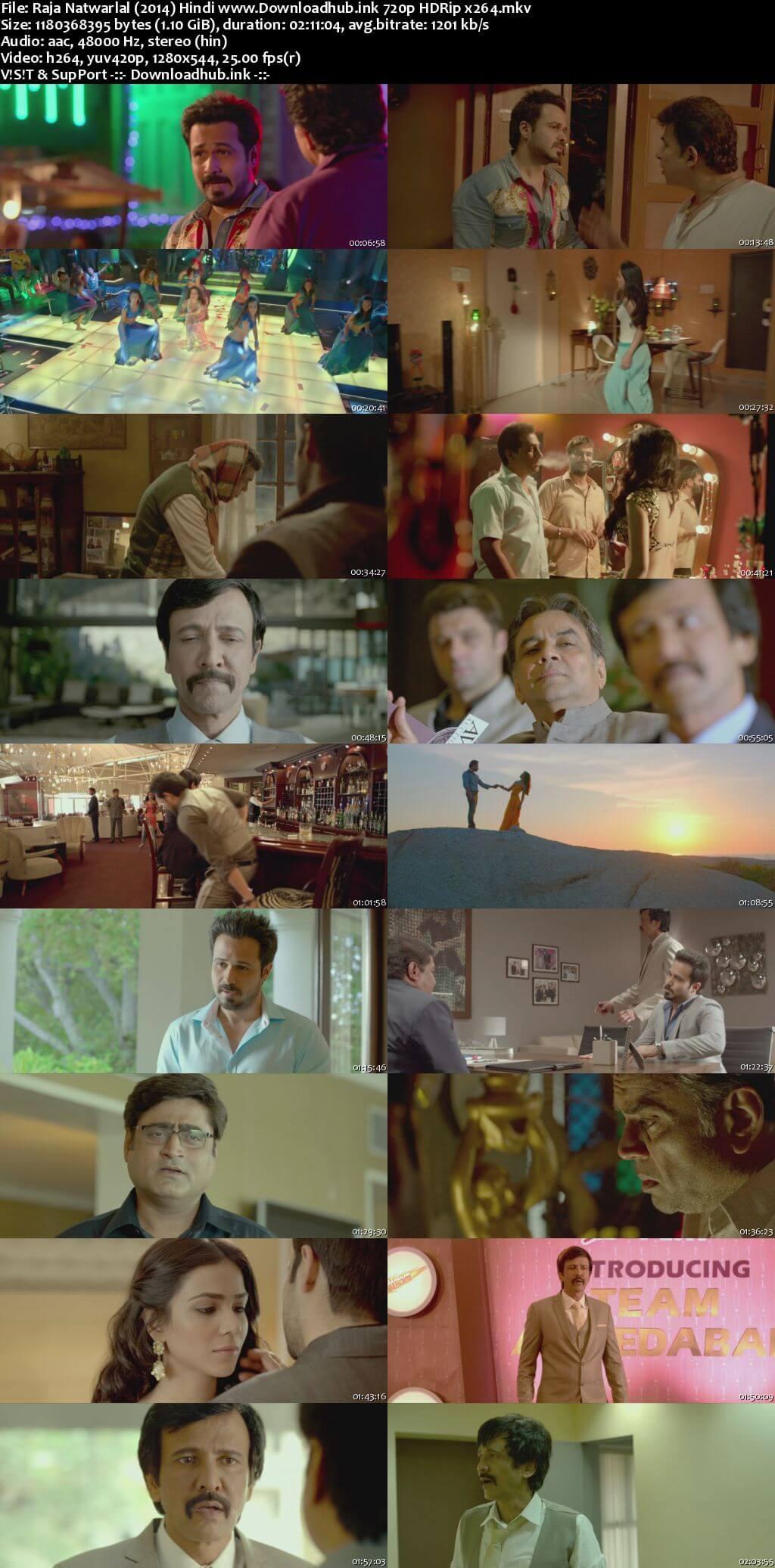 Raja Natwarlal 2014 Hindi 720p HDRip x264