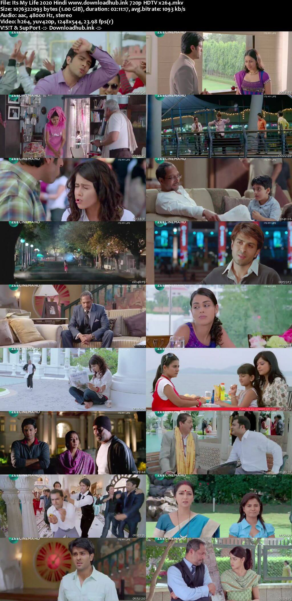 Its My Life 2020 Hindi 720p HDTV x264