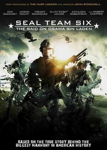 Seal Team Six The Raid On Osama Bin Laden 2012 Dual Audio Hindi English BRRip 720p 480p Movie Download