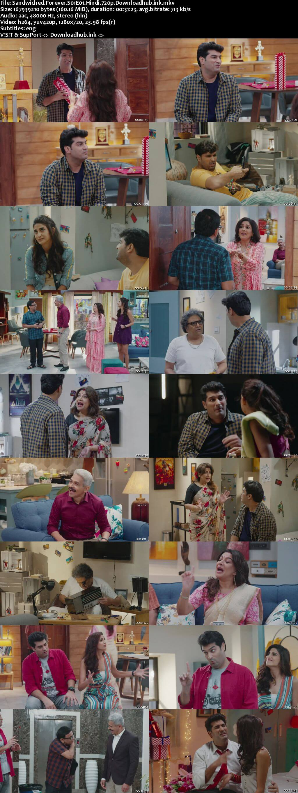 Sandwiched Forever 2020 Hindi Season 01 Complete 720p HDRip ESubs