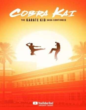 Cobra Kai 2018 S01 Complete Hindi Dual Audio 720p Web-DL ESubs