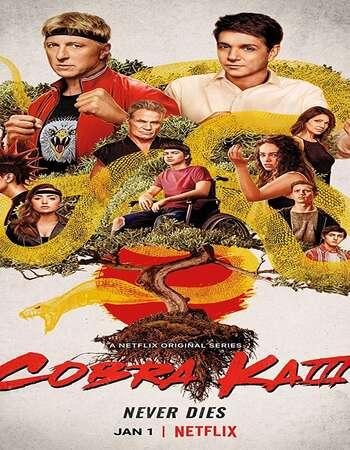 Cobra Kai 2021 S03 Complete Hindi Dual Audio 720p Web-DL MSubs