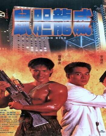 High Risk 1995 Hindi Dual Audio Web-DL Full Movie 480p Download
