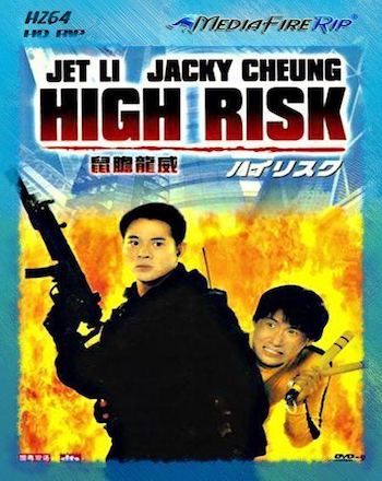 High Risk 1995 Dual Audio Hindi 480p WEB-DL 300MB