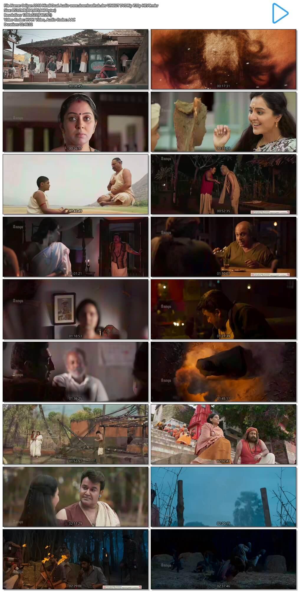 Odiyan 2018 Hindi Dual Audio 850MB UNCUT DVDRip 720p HEVC