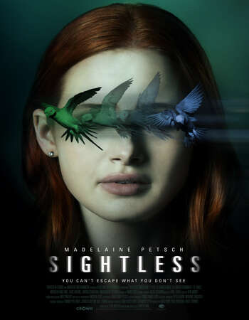Sightless 2020 Hindi Dual Audio 450MB Web-DL 720p ESubs HEVC