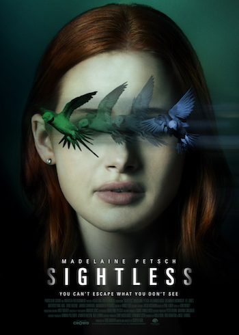 Sightless 2020 Dual Audio Hindi 720p WEB-DL 750mb
