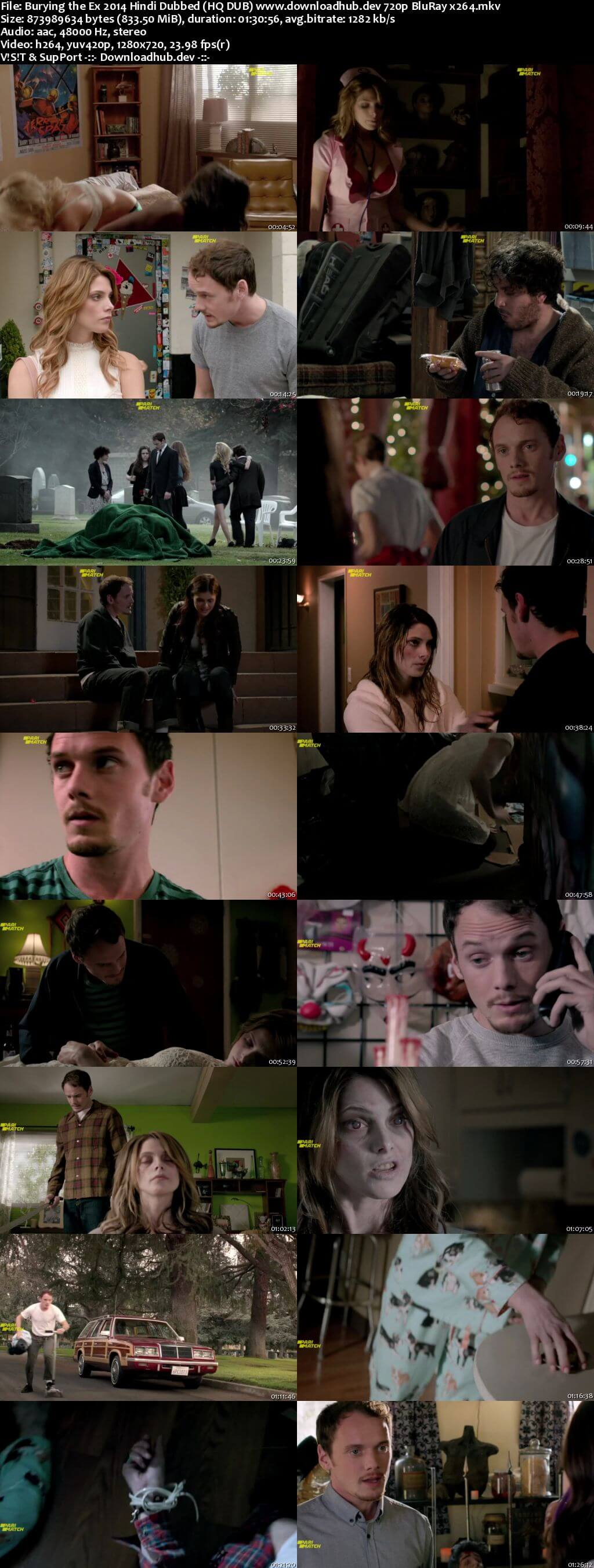 Burying the Ex 2014 Hindi (HQ DUB) 720p BluRay x264