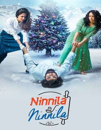 Ninnila Ninnila 2021 Hindi Dual Audio 600MB UNCUT HDRip 720p ESubs HEVC