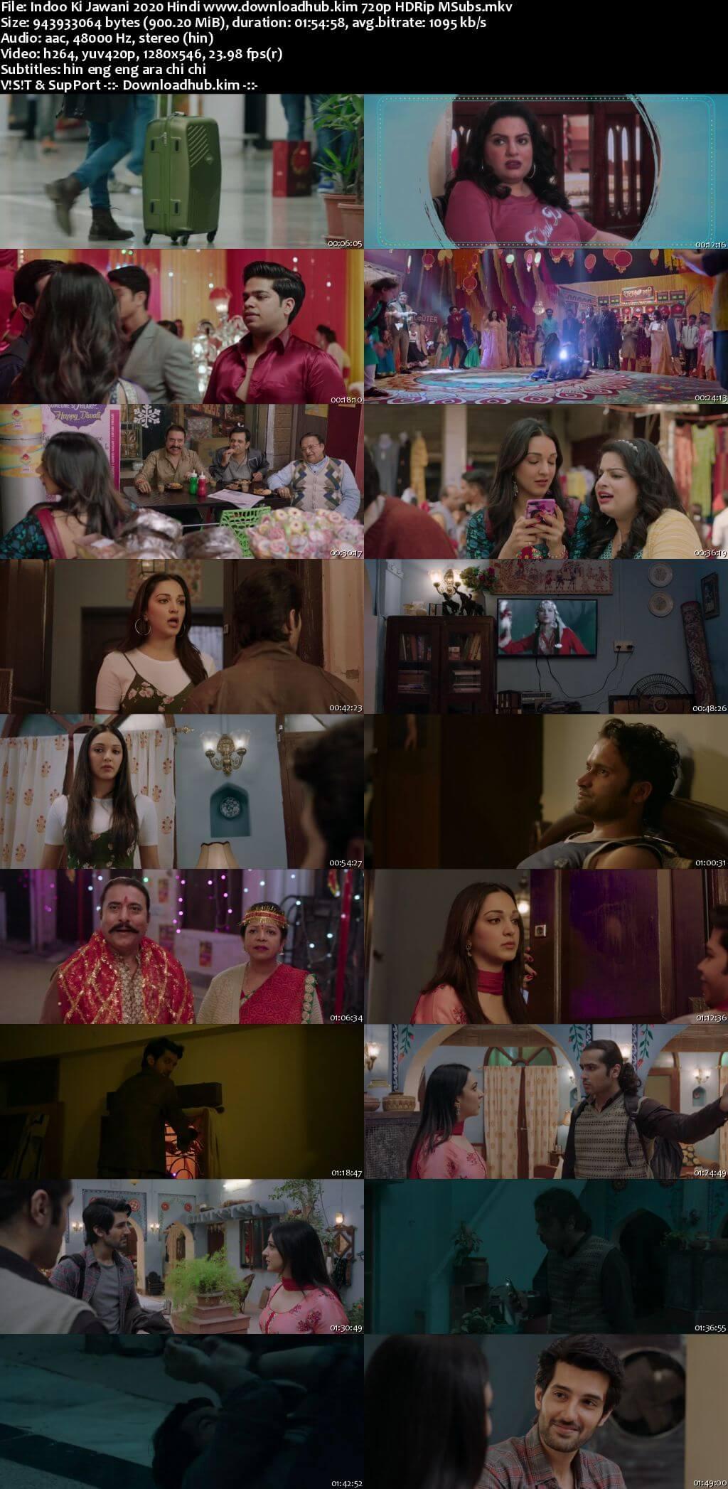 Indoo Ki Jawani 2020 Hindi 720p HDRip MSubs