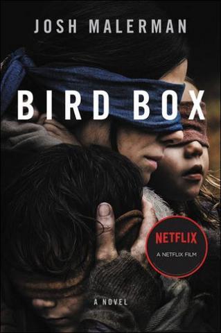 Bird Box 2018 Netflix Dual Audio Hindi (Fan Dub) 480p WEB-DL x264 400MB