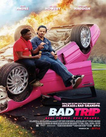 Bad Trip 2021 Hindi Dual Audio 450MB Web-DL 720p MSubs HEVC