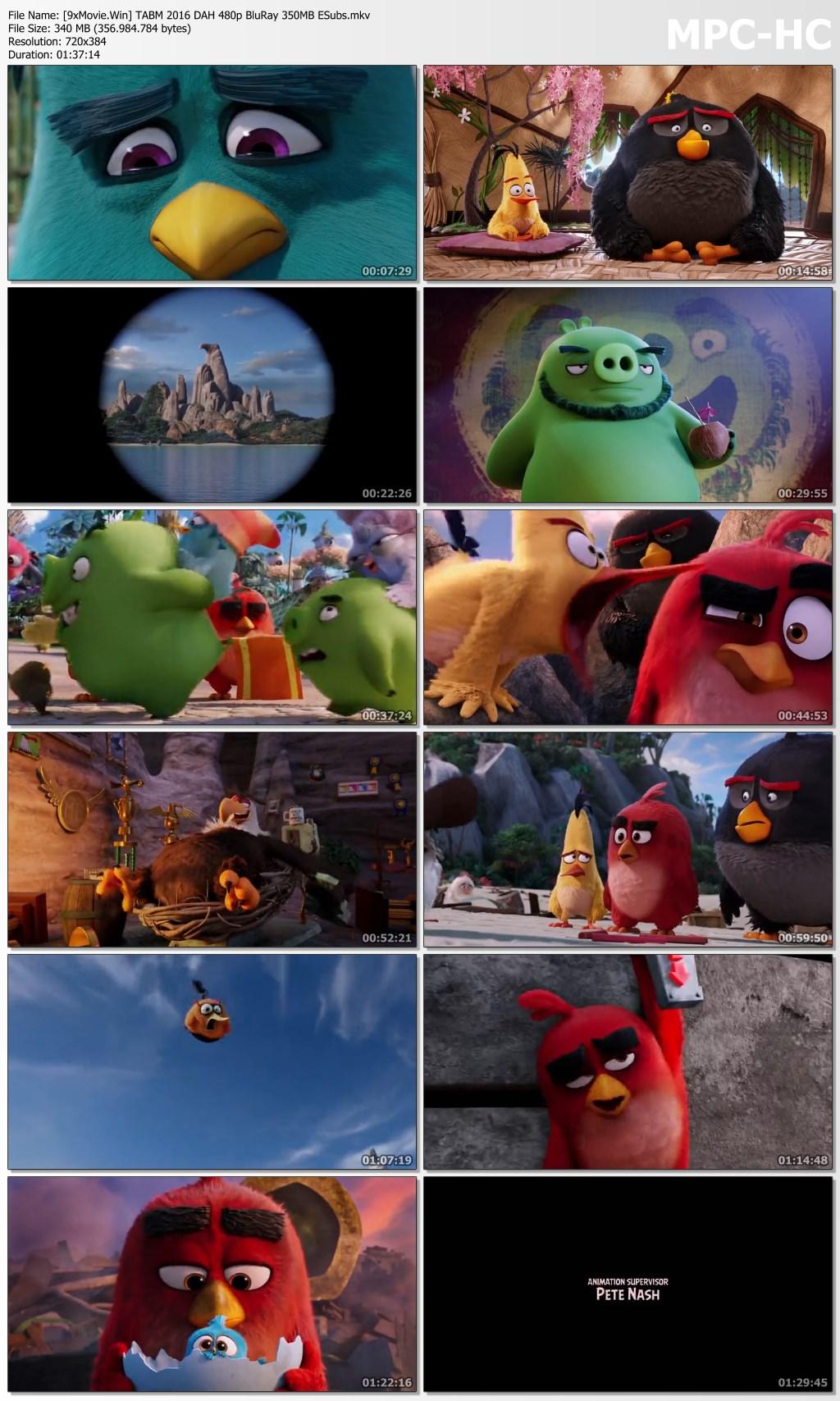 The Angry Birds Movie 2016 Dual Audio Hindi 480p BluRay x264 350MB ESubs